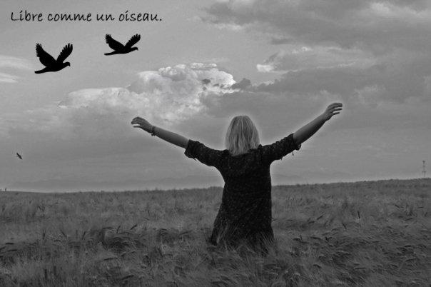 Freiheit Bilder