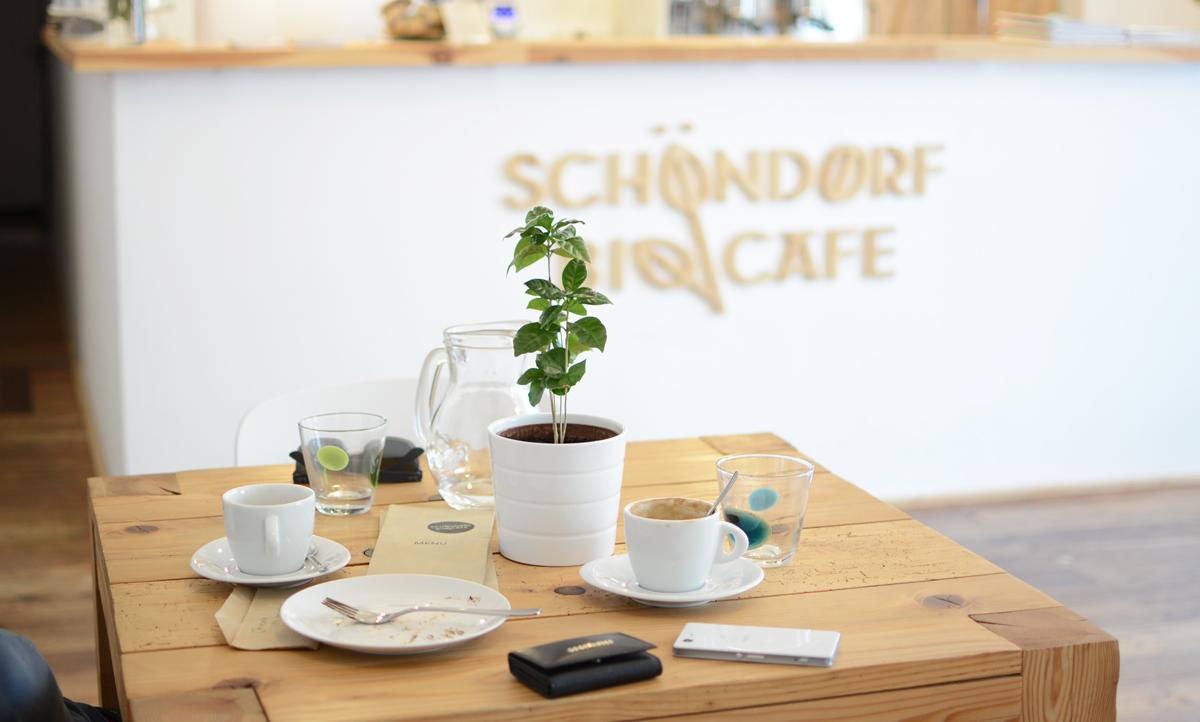 Schoendorf Bio Cafe in Bratislava |Pixi mit Milch