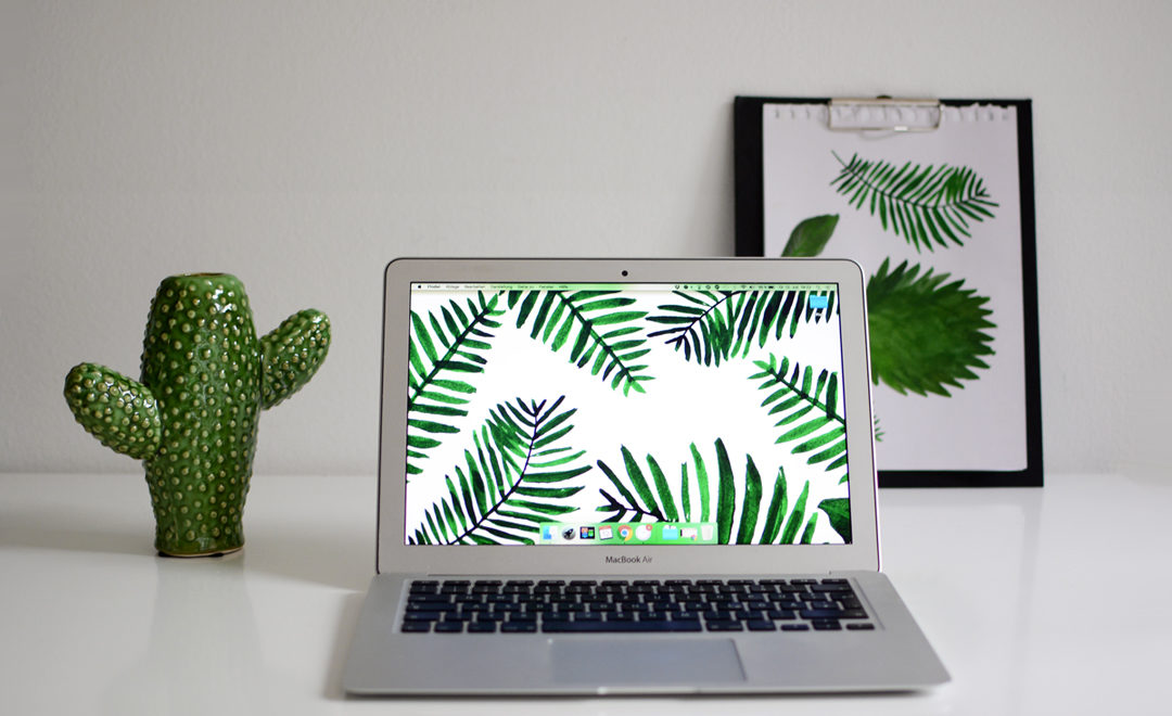 Palm-Leaves-Wallpaper-Teaser_PiximitMilch