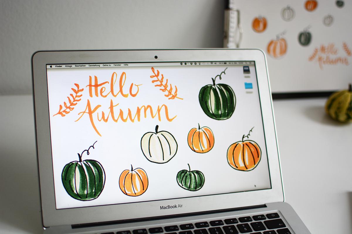 pumpkin wallpaper   pixi mit milch