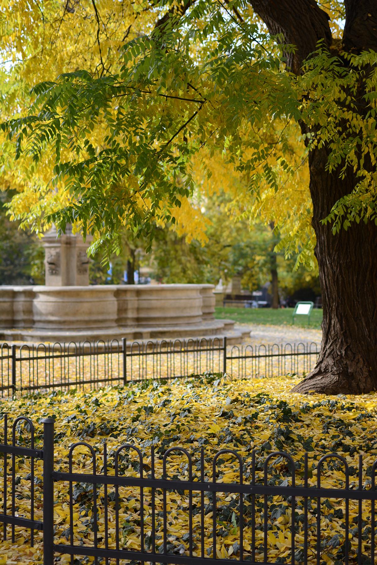 Prag Herbst | Pixi mit milch