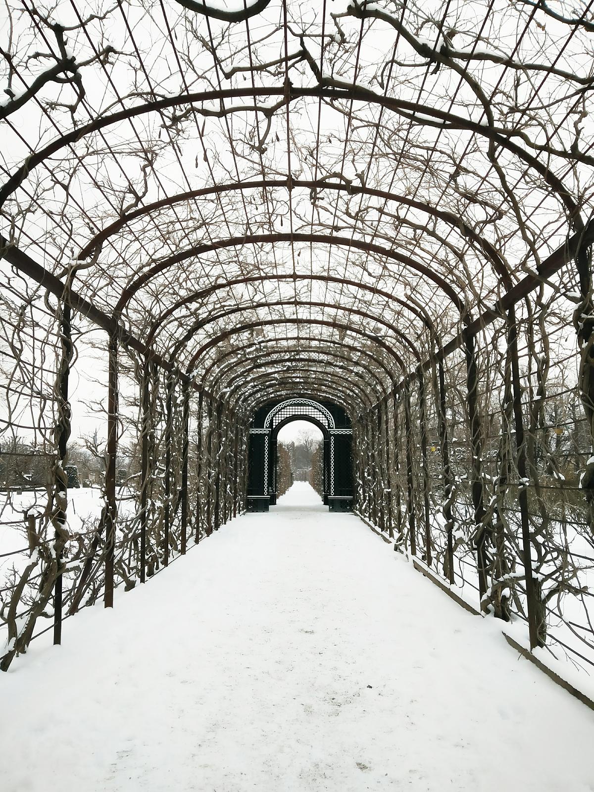 Verschneites Schönbrunn |Pixi mit Milch