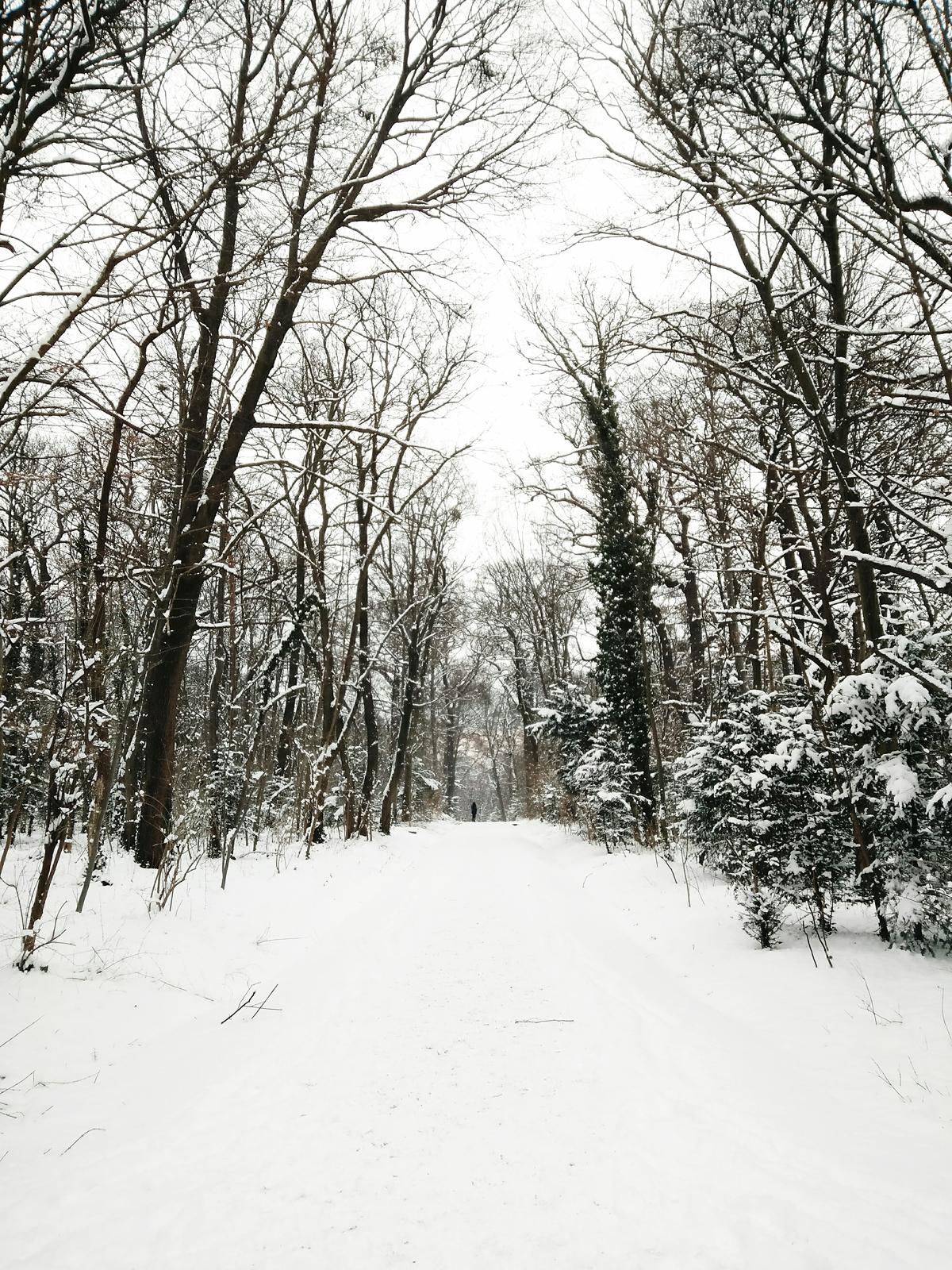 Schneelandschaft |Pixi mit Milch