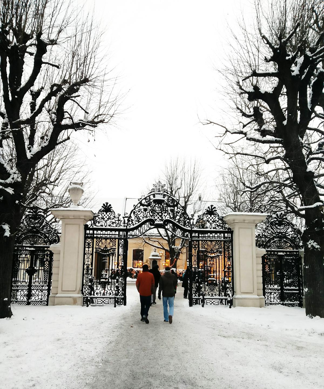 Schönbrunn im Winter |Pixi mit Milch