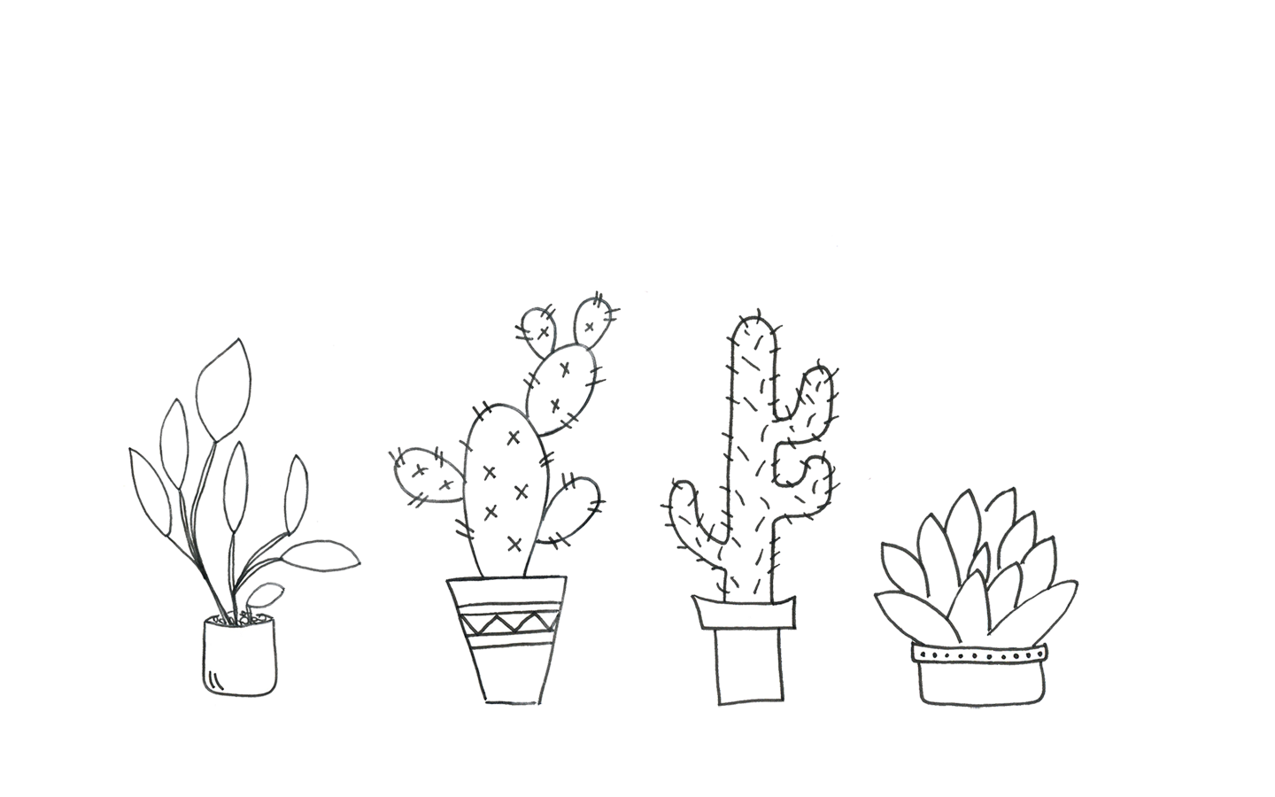 Cacti-Wallpaper-1440_PiximitMilch