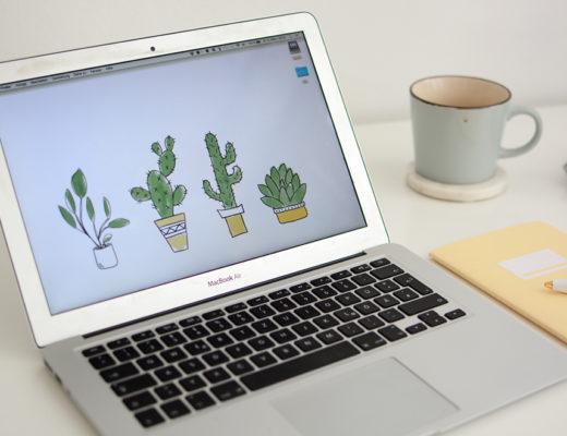Cacti-Wallpaper-Teaser_PiximitMilch