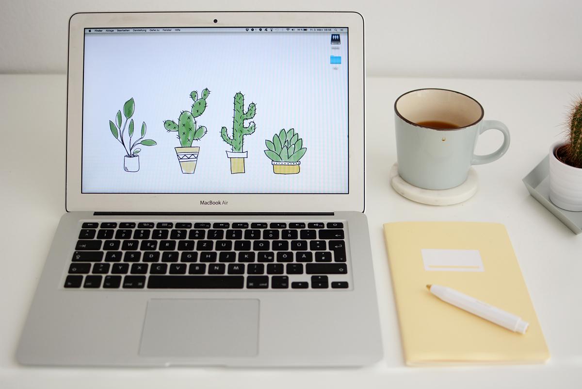 Cacti Wallpaper bunt | Pixi mit Milch