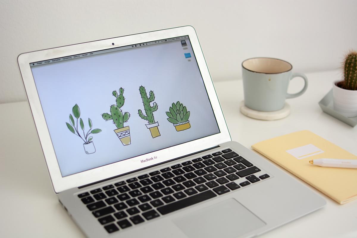 Cacti-Wallpaper | Pixi mit Milch