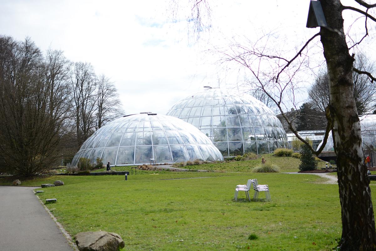 Botanischer Garten Zürich |Pixi mit Milch