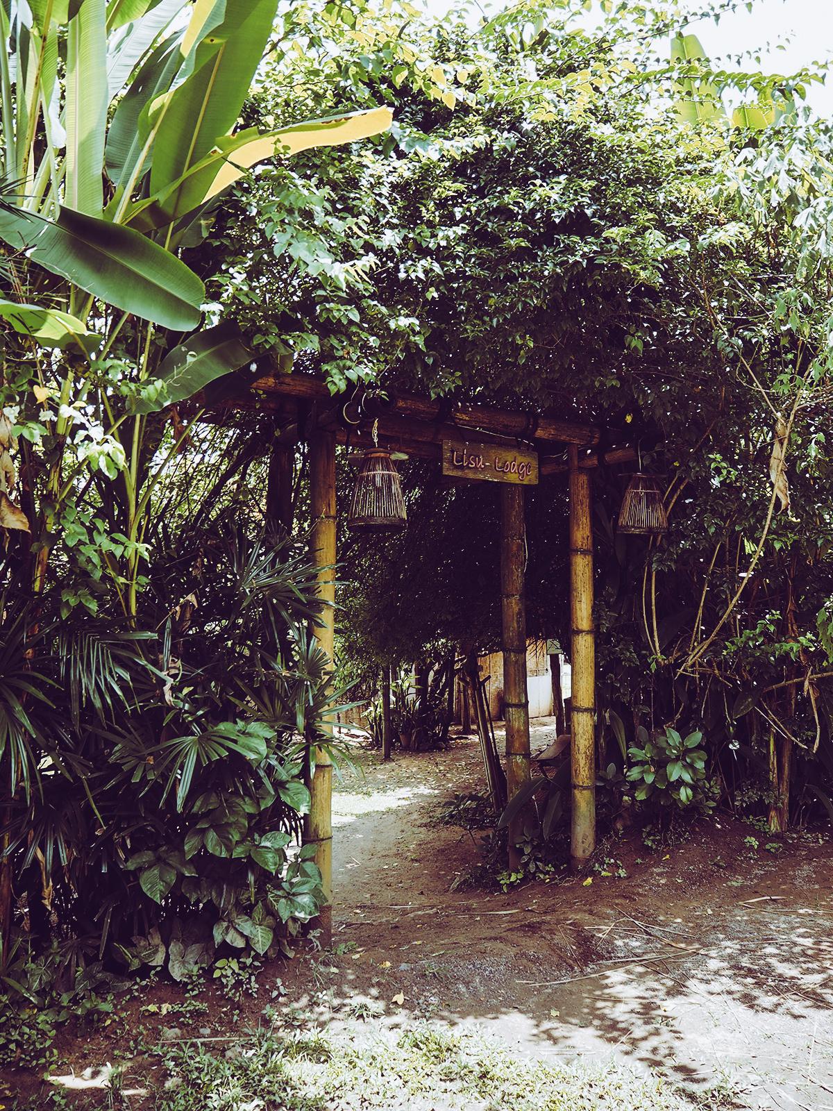 Lisu Lodge | Pixi mit Milch