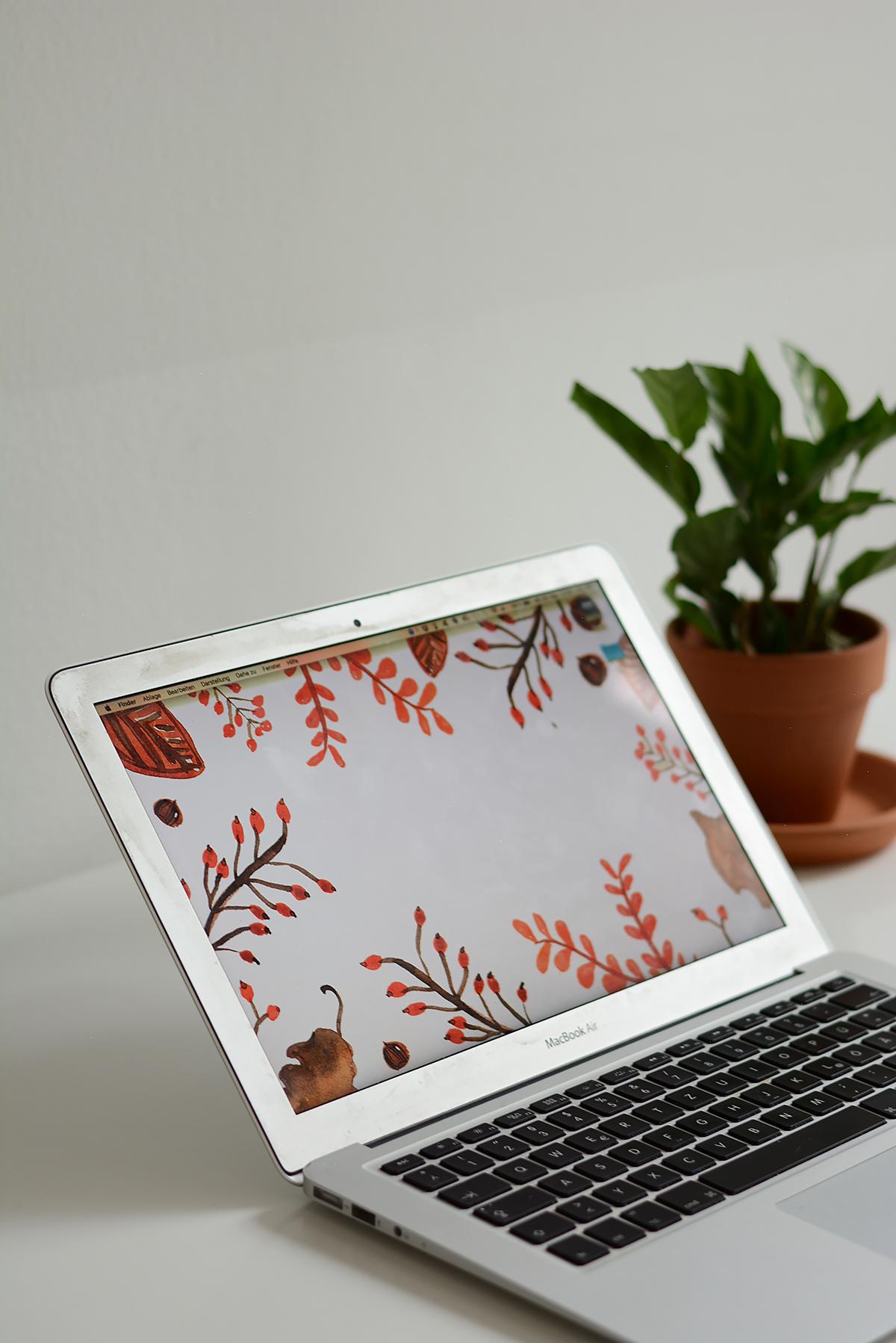 Autumn-Wallpaper | Pixi mit Milch