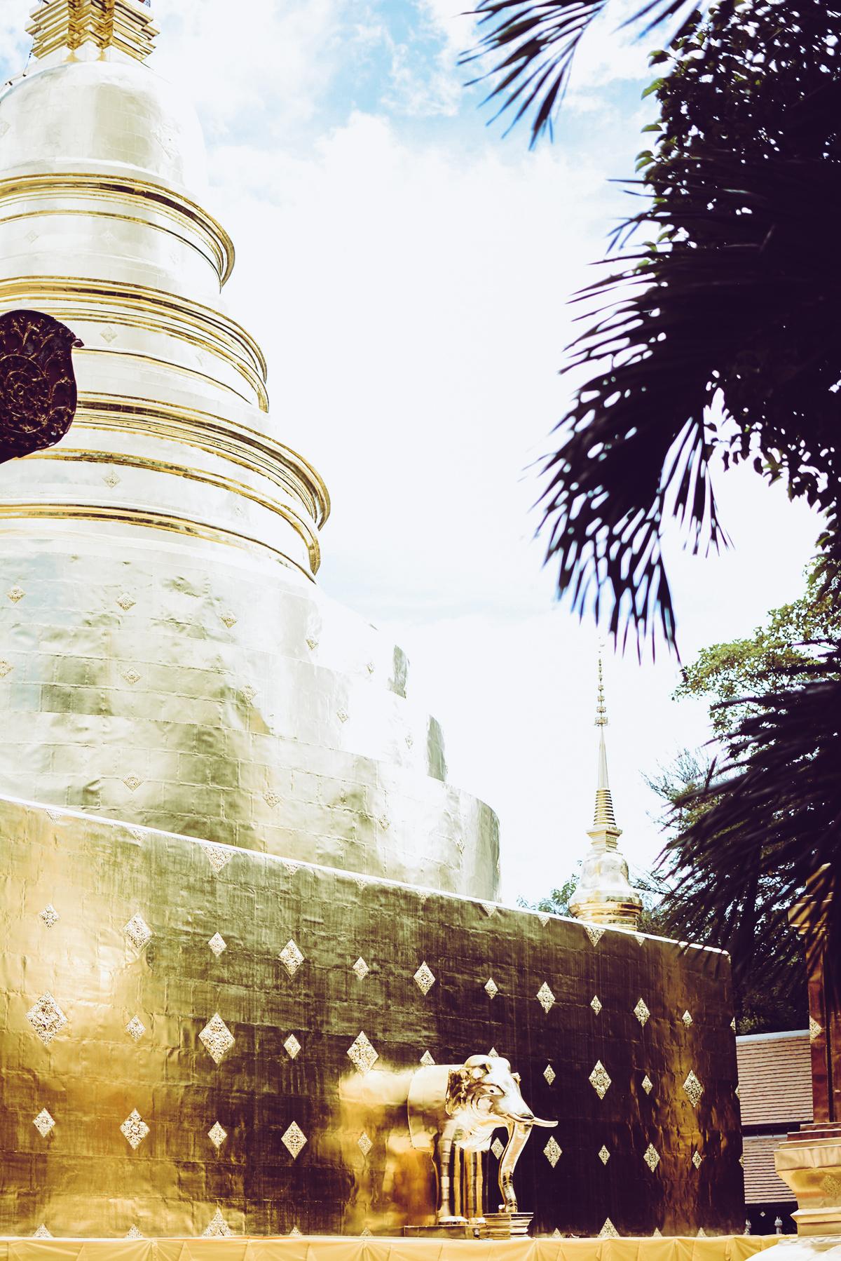 Wat Phra Singh | Pixi mit Milch