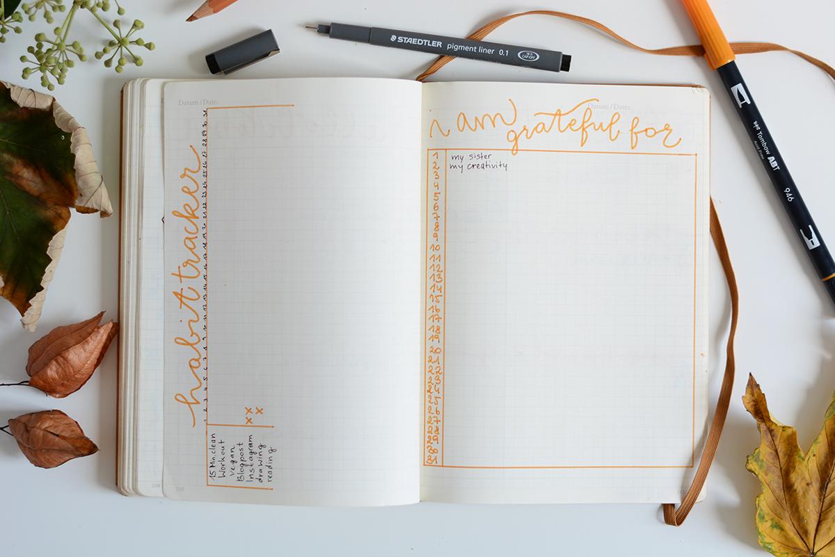 Bullet Journal Setup | Pixi mit Milch