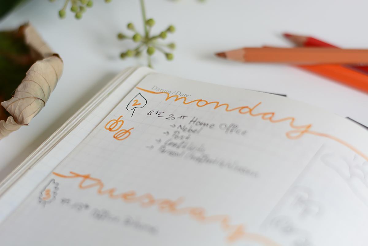 Bullet Journaling | Pixi mit Milch