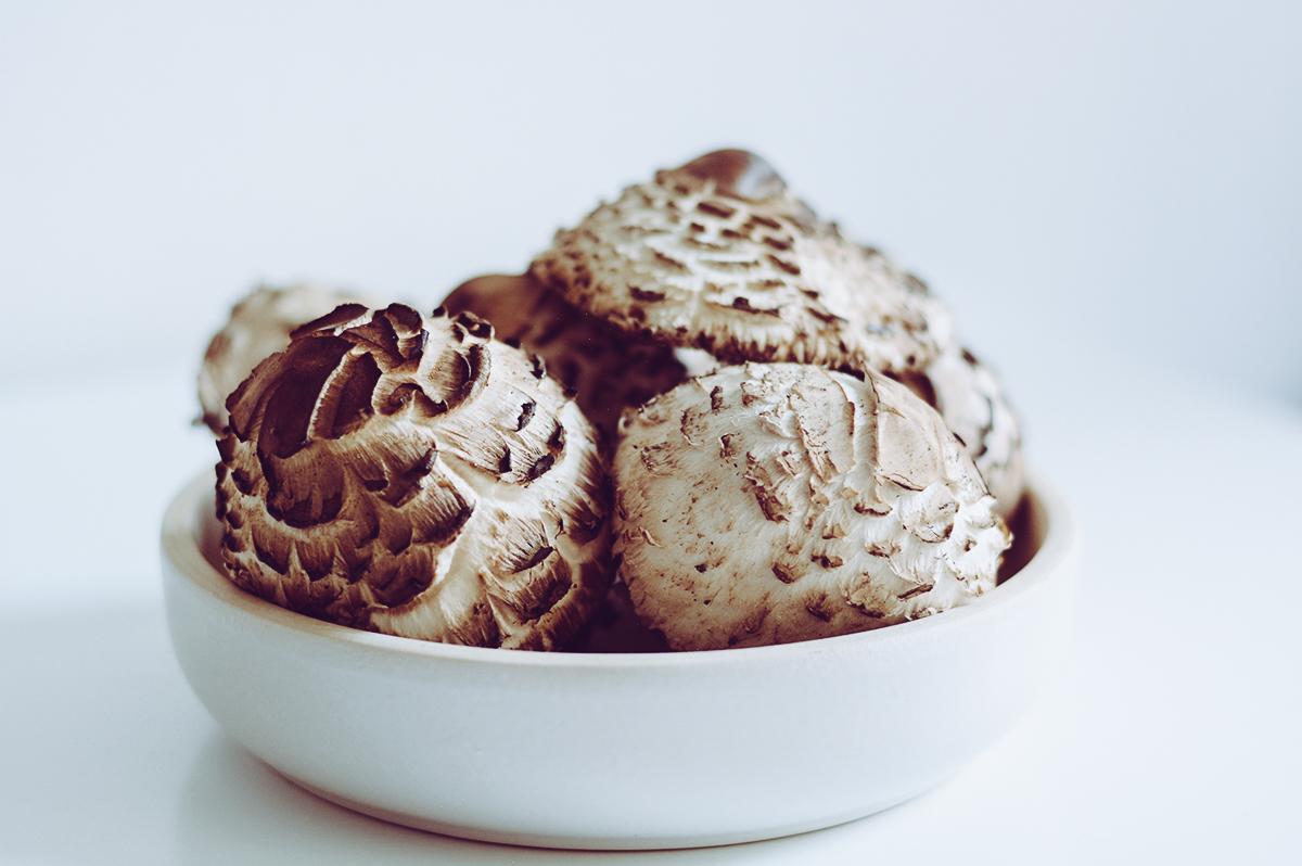 Parasol-Pilze | Pixi mit Milch