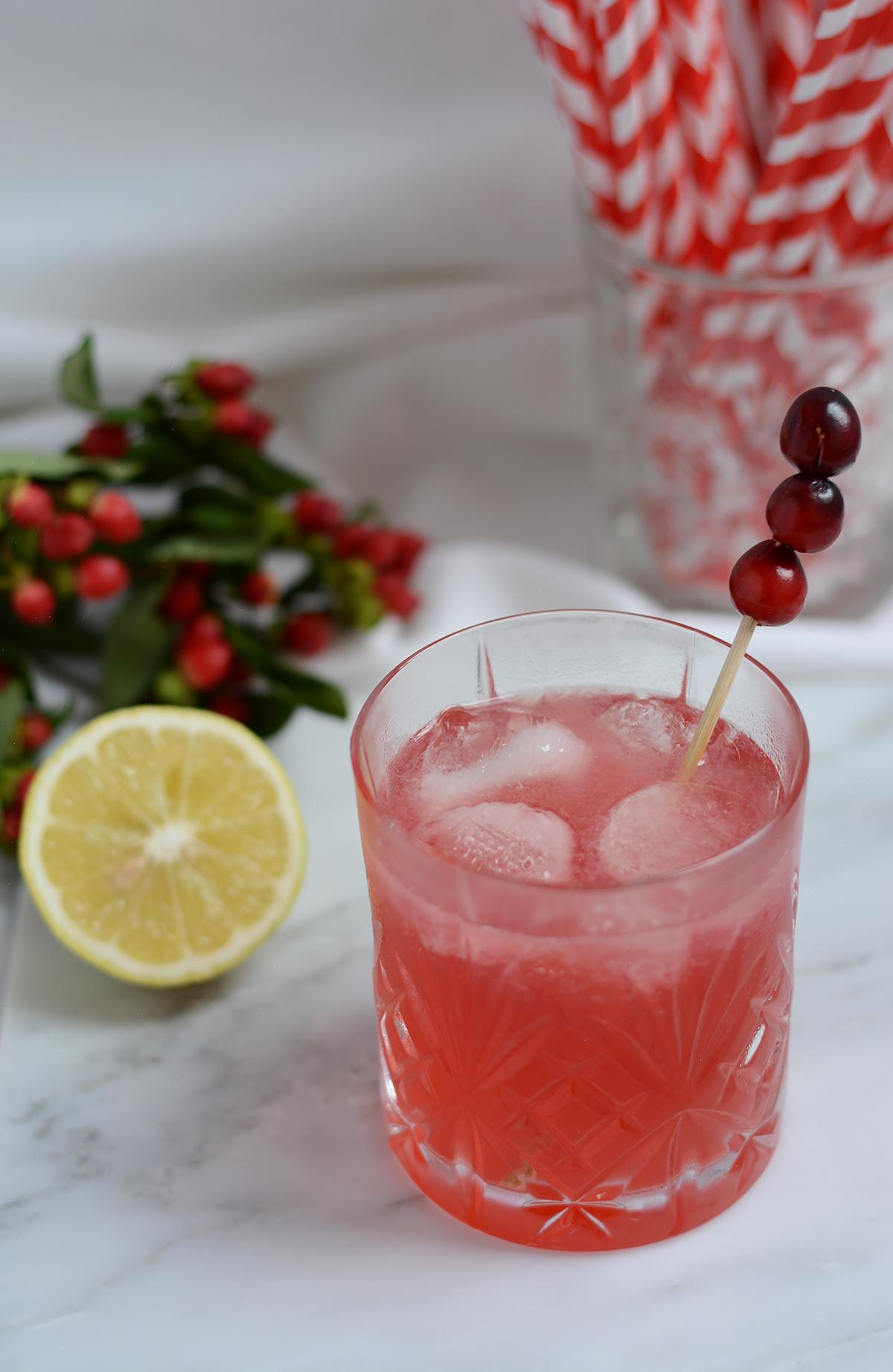 Cranberry-Mule Recipe | Pixi mit Milch