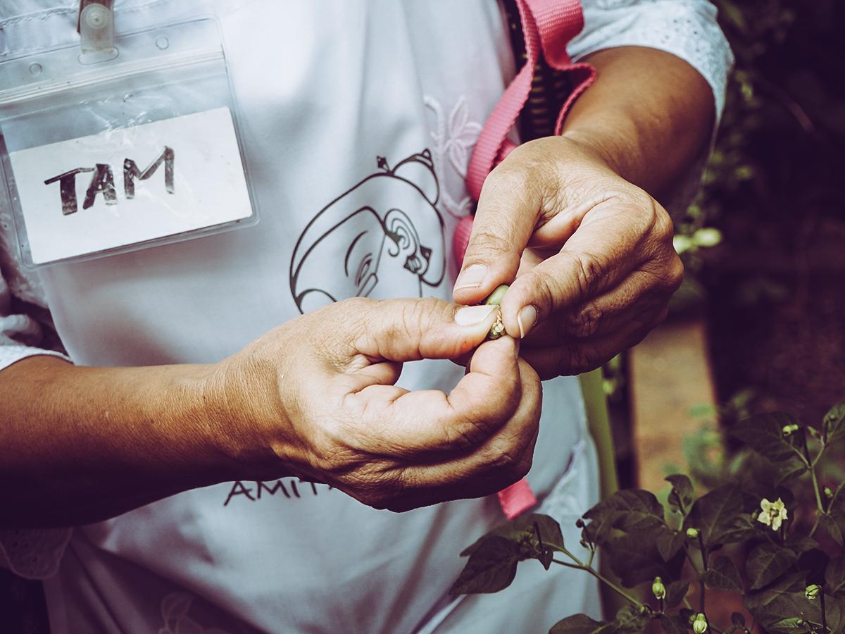Tipp: Amita Thai Cooking Class |Pixi mit Milch