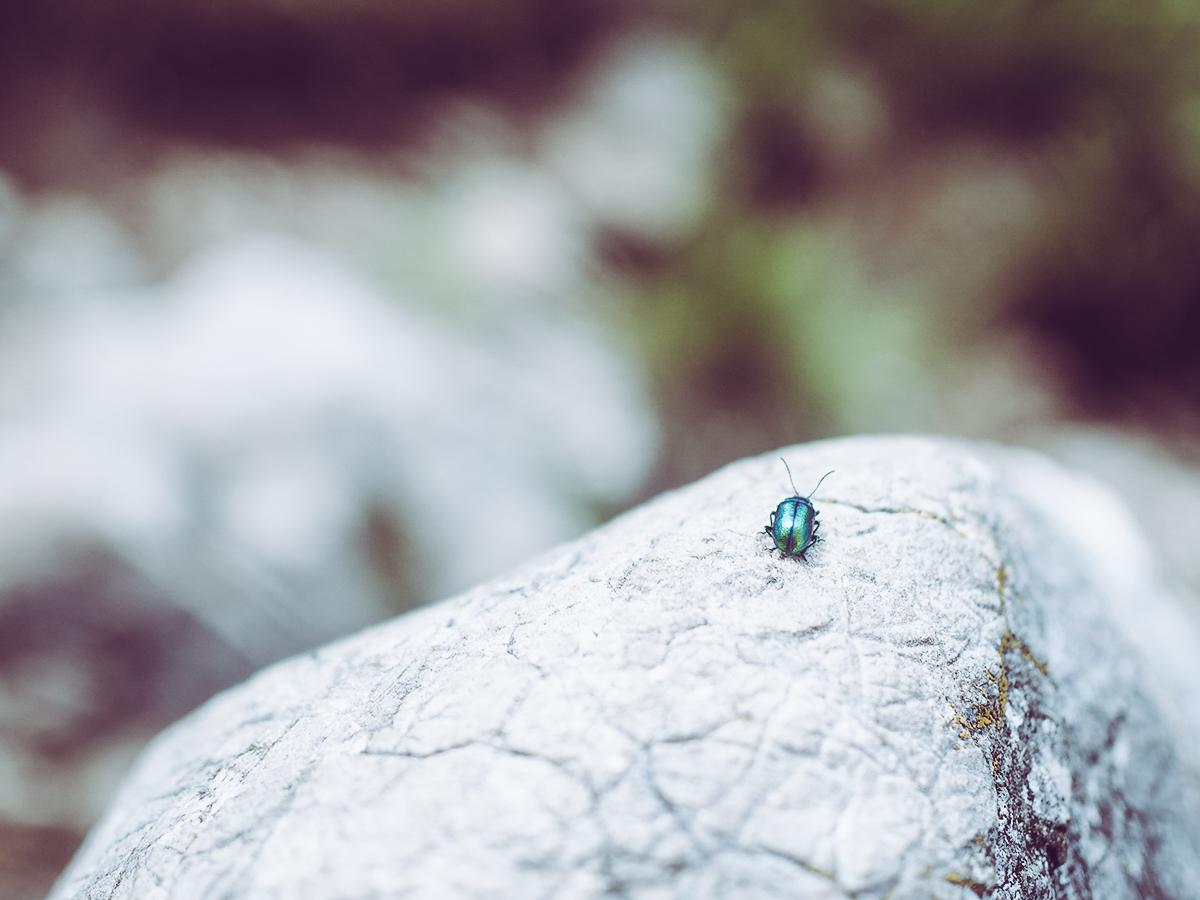 Katrin Bergwanderung |Pixi mit Milch
