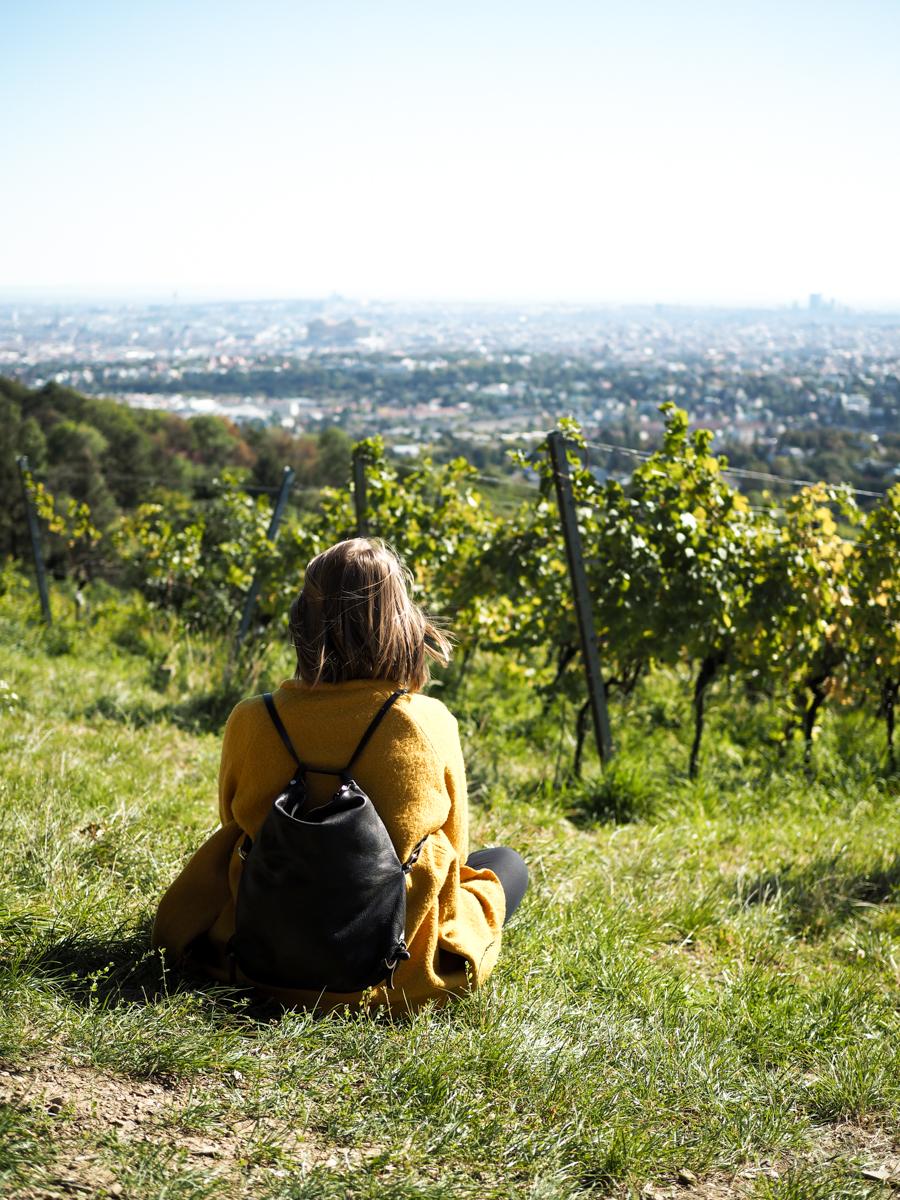 Tipp: Weinwandern Wien | Pixi mit Milch