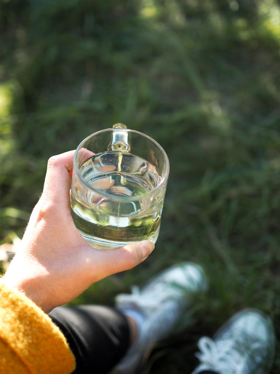 Wien-Tipp: Weinwandern | Pixi mit Milch